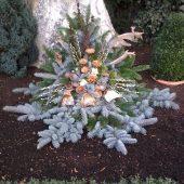 Wintergesteck mit Blautanne und Holzblüten