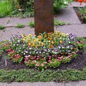 Urnengrab mit Frühlingsbepflanzung