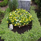 Urnengrab mit Bepflanzung im Frühling