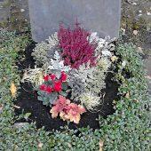 Herbstbepflanzung am Urnengrab
