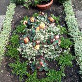 Sommerbepflanzung mit mit weißer Myrte, orangenen Knollenbegonien und weißen Euphorbien
